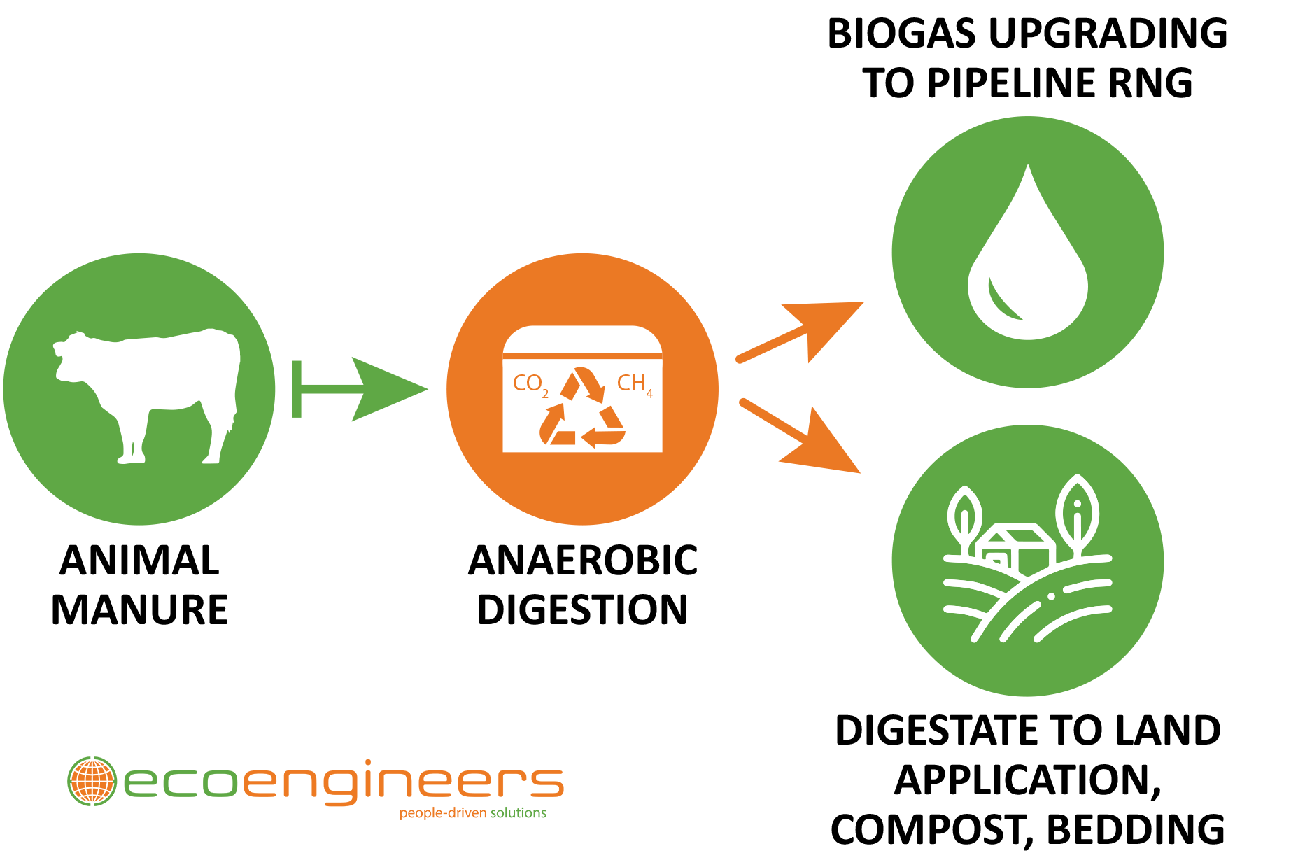Anaerobic Digester flow chart EcoEngineers